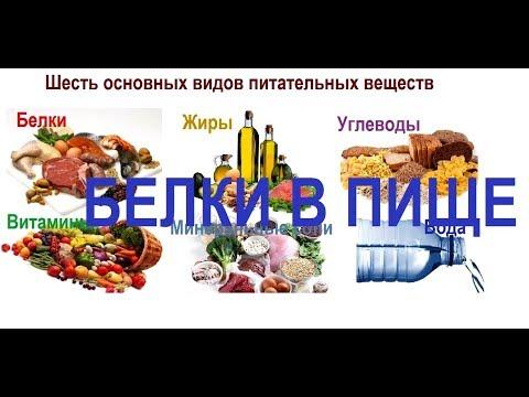 Белки в пище и незаменимые аминокислоты