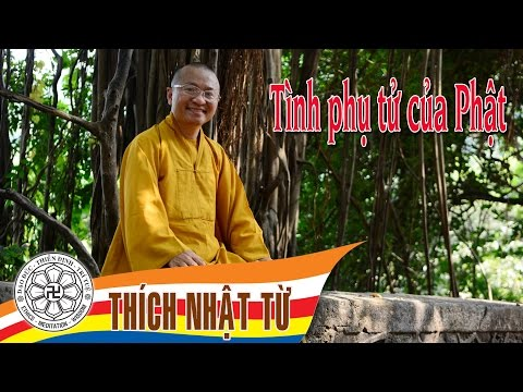 Tình phụ tử của Phật 1A (19/06/2005) Thích Nhật Từ