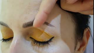 Healed Density Restoration Microblading  Session only by El truchan @ Perfect Definition