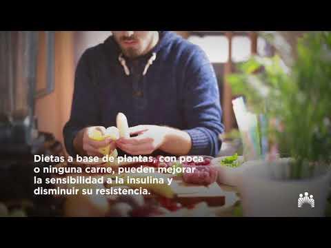 Dieta en la diabetes mellitus con colesterol elevado