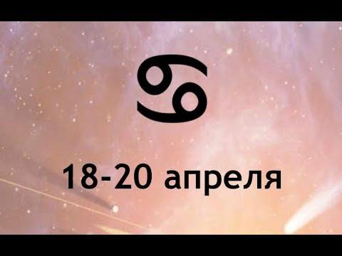 Лев в год петуха 2017 гороскоп для всех знаков