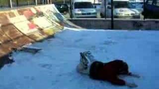 preview picture of video 'Crash en skate sur une rampe enneigée d'un jeune Jackass !'