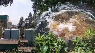 Limbah Cair Hitam Ubah Warna Sungai Asahan