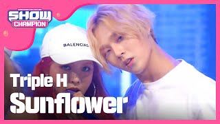 Show Champion EP.228 Triple H - Sunflower