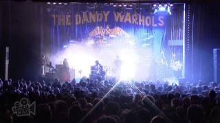 The Dandy Warhols - Wasp In The Lotus (Live in Sydney) | Moshcam