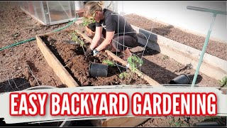 EASY BACKYARD GARDENING | TOMATOES & PEPPERS IN RAISED GARDEN BEDS | HOW TO START A GARDEN