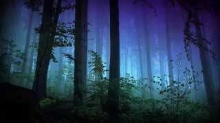 Jaymes Young   Northern Lights (subtitulos En Español)