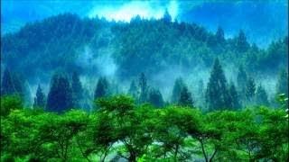 ショパン:ピアノ協奏曲第1番ホ短調Op.11:第2楽章[ロマンツァ:ラルゲット][ナクソス・クラシック・キュレーション#癒し]