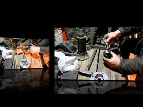 Значение талисмана карп в фен-шуй