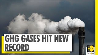 Greenhouse gases hit new record despite lockdowns | GHG | Global Warming