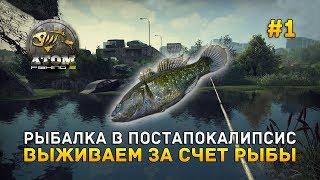 Где и какая рыба клюет в атом фишинг