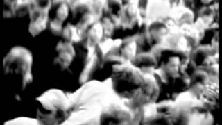 2001 –  Weil es jeder tut (live)