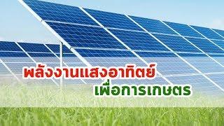 พลังงานแสงอาทิตย์เพื่อการเกษตร |  โซล่าเซลล์เพื่อการเกษตร | Solar Cell