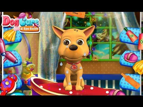 Video of Dog Care & Spa Salon