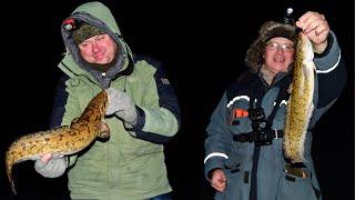 Зимняя рыбалка на налима в удмуртии