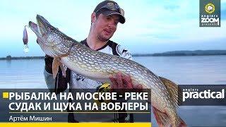 Рыбалка с артемом мишиным