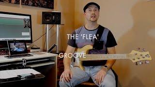 Flea Style Groove Lesson