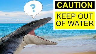 KEEP OUT OF THE POOL??!!  Playing with the Mattel Mosasaurus in water