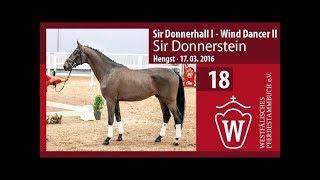 Video von Sir Donnerstein
