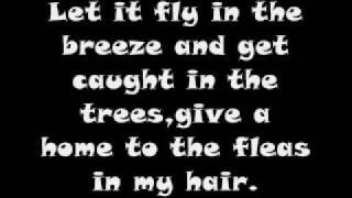 Hair- Song Hair Lyrics