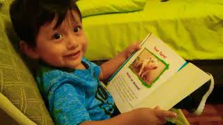 Cómo leer un libro con 2 años de edad