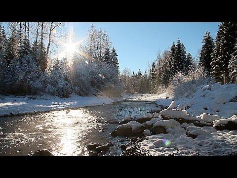 Entspannungs - Landschaft, HD Naturgeräusche Wasser und Vogelgezwitscher