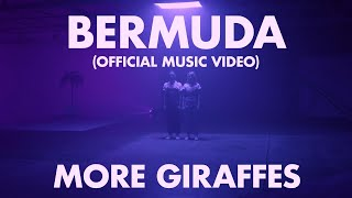 More Giraffes   Bermuda