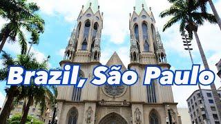 世界一周旅行!ブラジル、サンパウロをお散歩。shallwegoforwalkinSaoPaulo?#70