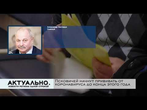 Актуально Псков / 05.08.2020