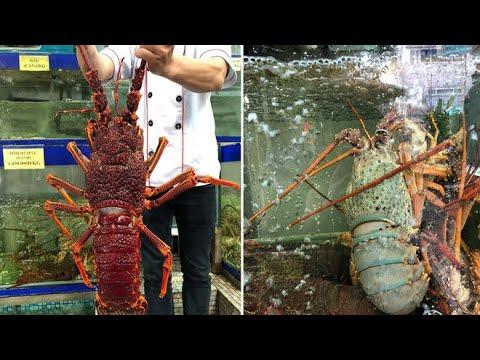 Hải sản lớn nhất biển Mỹ Khê Đà Nẵng   Du lịch đà nẵng , ngũ hành sơn   thiên đường ẩm thực #DN