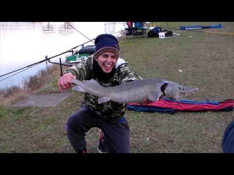 La pesca in Bashkiria sui fiumi su una picca