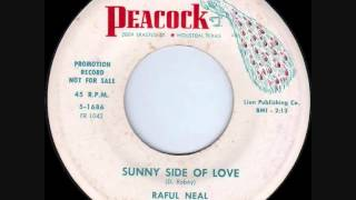Raful Neal - Sunny Side Of Love