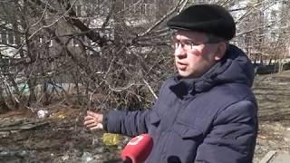 17 04 2019 Общегородские субботники пройдут в Ижевске 27 апреля и 18 мая