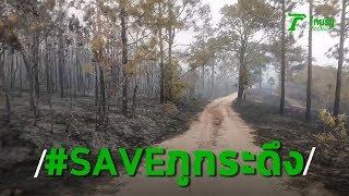 เปิดภาพหลังไฟป่าเผาภูกระดึง วอดวาย 3.4 พันไร่ | Thairath Online