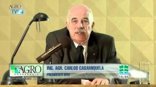 Carlos Casamiquela