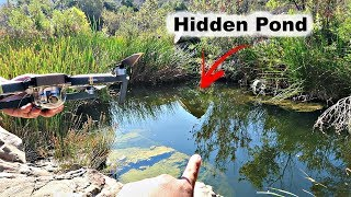 Drone Fishing - HIDDEN Tiny Pond!!!