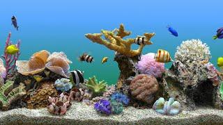 ????Спокойная музыка для души, сна и отдыха | Аквариум с рыбками????