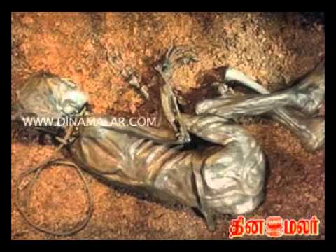 Dinamalar Videos - Breaking News videos_ Live News Videos_ News Videos Online_ Latest Video.flv