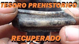 EN BÚSQUEDA DE UN TESORO DE LEYENDA 21 prt.