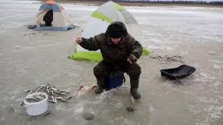 Рыбалка на севере солзенский котлован