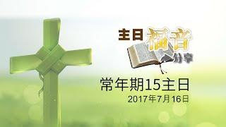 29主日福音分享-常年期15主日