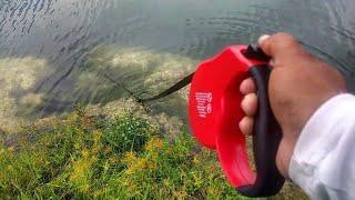 Retractable Dog Leash Catches FISH! DIY Fishing
