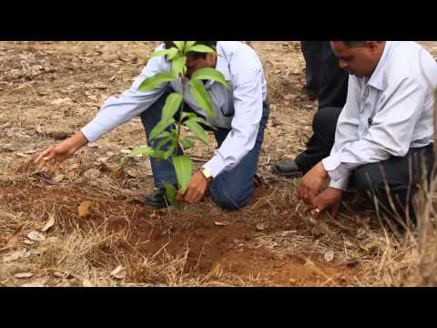 Tata Power promotes Biodiversity at Walvhan Gardens