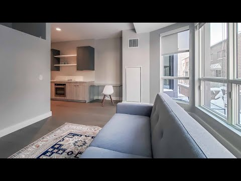 A Gold Coast one-bedroom  #213 at The Clark, a new, boutique mid-rise