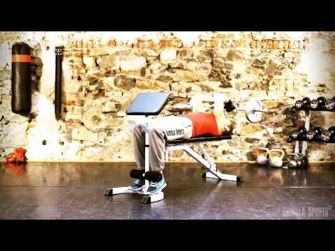 La gymnastique pour les muscles de la personne