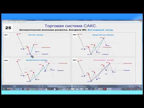 Akcijų pasirinkimo sandorių kapitalo prieaugis