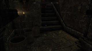 The Family Pet- The Elder Scrolls V: Skyrim