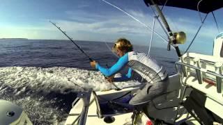 Рыбалка на маврикии марлин