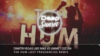 Dimitri Vegas & Like Mike vs Ummet Ozcan - The Hum (Lost Frequencies Remix)