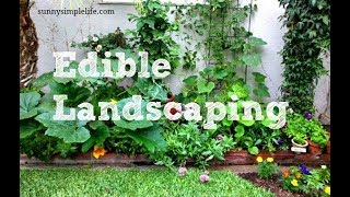 Edible Landscaping The Permaculture Way